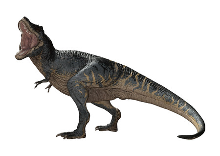 3D rendering of a dinosaur Tyrannosaurus Rex isolated on white background