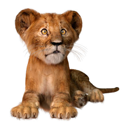 3D rendering of a cute lion cub isolated on white background Foto de archivo