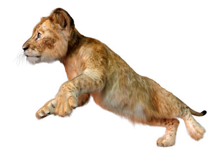 3D rendering of a cute lion cub isolated on white background