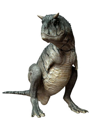 3D rendering of a Carnotaurus Sastrei dinosaur or flesh eating bull isolated on white background