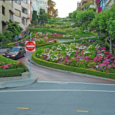 Lombard street in San Francisco, the crookedest street in the world