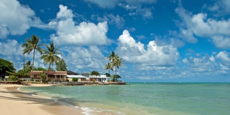 ヤシの木と背景パノラマの紺碧の海と手つかずの砂浜のビーチの高級住宅
