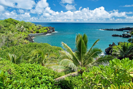 マウイ島のハワイの楽園