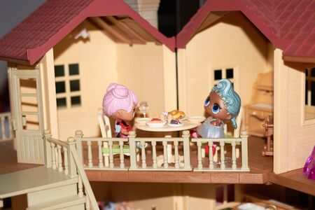 Dolls at doll house for enjoy eating