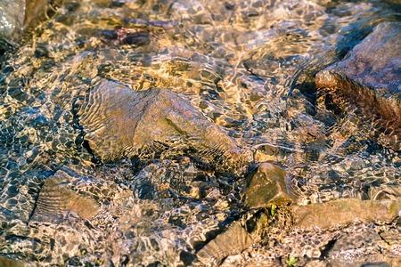 水の Slh グレア