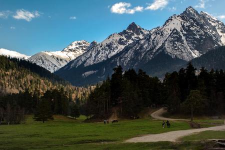 ピークの背景に Arkhyz の山の中の乗馬ツアー