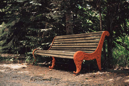Single bench. Old bench. senility empty bench.