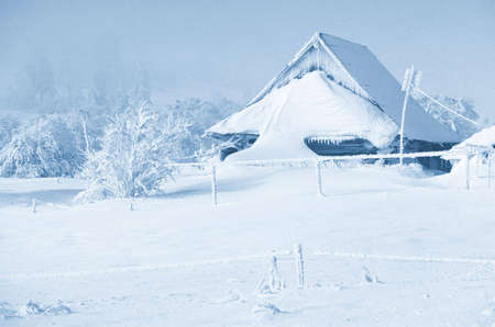 Nice winter lanscape tinted blue - snowy haus Stock Photo - 2518204