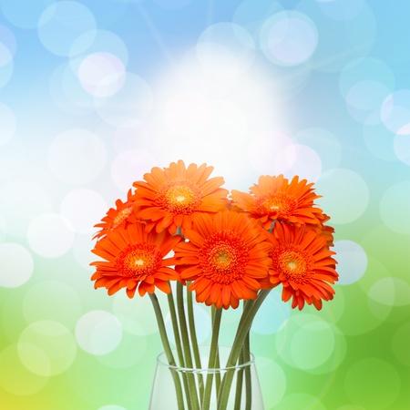 Orange gerberas in vase on spring background  photo
