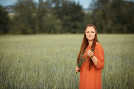 Caucasian red-haired woman in a red dress walking on a farm field with wheat at sunset on a summer day.future organic food crop