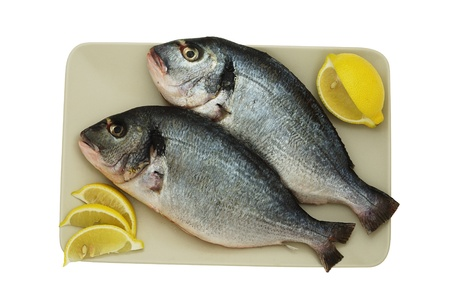 Two raw denis( sea bream) fishes with lemon  on squre ceramic plate isolated on white   Stock Photo