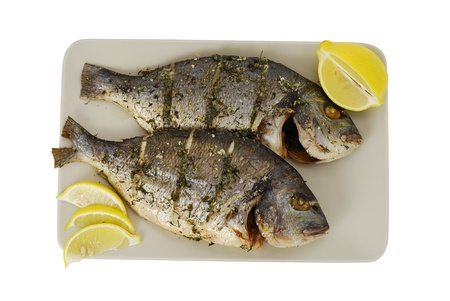 Two roasted denis( sea bream) fishes with lemon  on square ceramic plate isolated on white