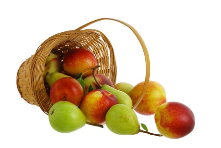 Fresh fruits pears, peaches and nectarines spilled from interwoven basket isolated on white background