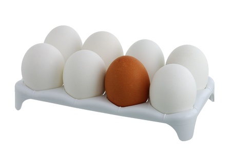 Seven white eggs and one brown in carton isolated on white background