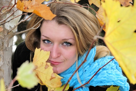 The young beautiful girl in autumn wood among yellow leaves Stock Photo - 11872243