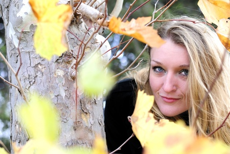 The young beautiful girl in autumn wood among yellow leaves photo