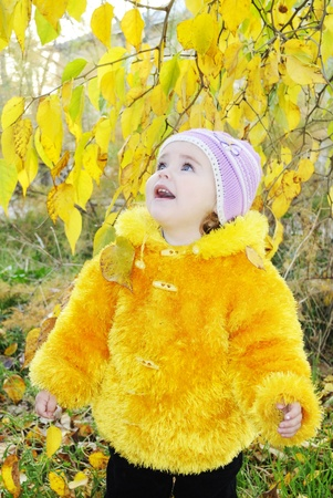 The little girl in autumn park among yellow leaves