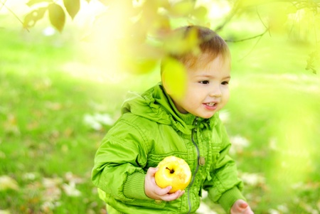 The small beautiful boy walks on a green glade with an apple Stock Photo - 13492205