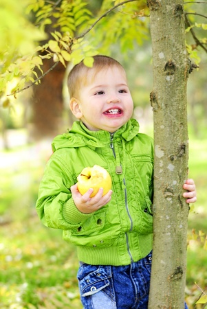 The small beautiful boy walks on a green glade with an apple Stock Photo - 13493272