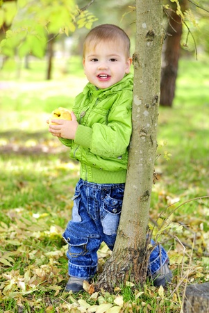 The small beautiful boy walks on a green glade with an apple Stock Photo - 13493153