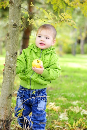 The small beautiful boy walks on a green glade with an apple  Stock Photo - 13493230