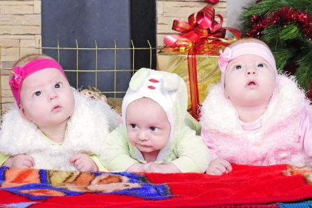 the boy and the Twins girls near a Christmas tree photo