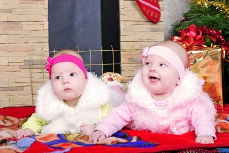 Twins girls near a Christmas tree photo