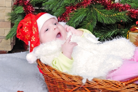 the little girl under the Christmas tree on new years cap photo