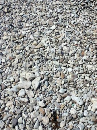 sea pebble Stock fotó