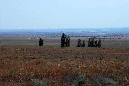 crimean: Crimean steppe Stock Photo