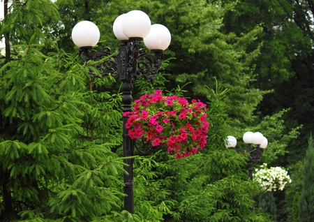 Decorative lantern of nightly illumination with flowers in the city park of rest