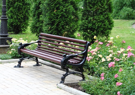 Forged bench is in the city park of rest photo