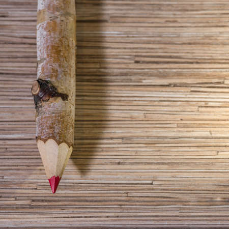 A red pencil made from a birch branch.