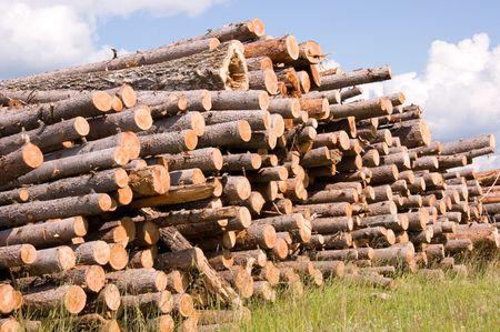 boles: many boles of timber on grass