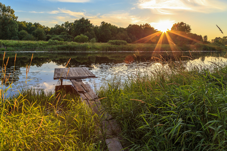 largest tree: Sunset over the river, wooden bridge, water lilies
