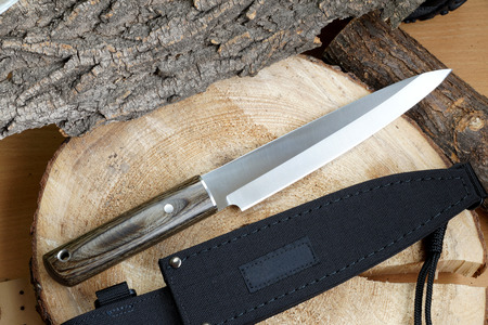 chrome molybdenum: Knife tourist fillet for thin cutting of fish