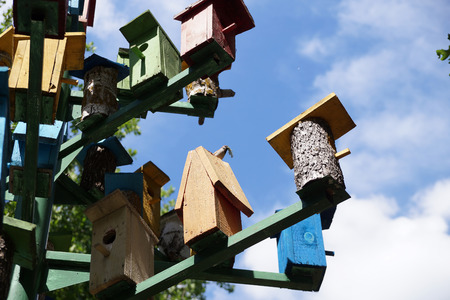 Lodge for birds – a nesting box on tourist base about Volgograd