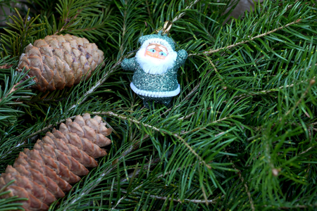 Toy Santa Claus against branches ate with the cone
