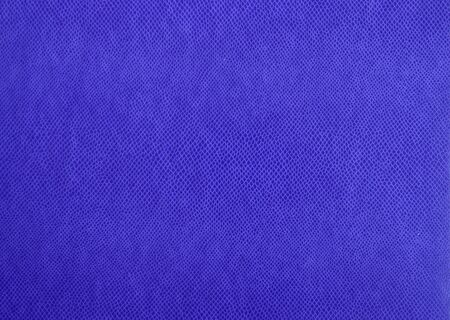Blue imprinted cover of the daily log