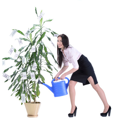 Image of businesswoman watering money tree with pot on white background photo