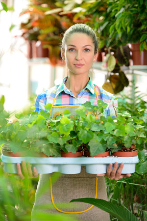 Young smiling woman florist working in the greenhouse. photo