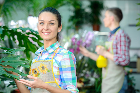smiling woman in a greenhouse: Young smiling florists man and woman working in the greenhouse.