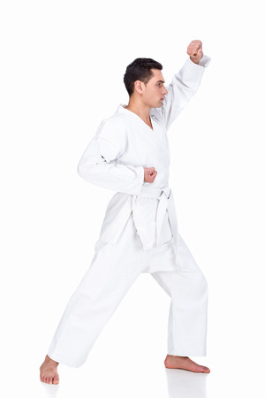 Portrait of a martial arts master on the white background.