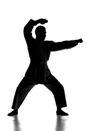 vietvodao: Silhouette of young man is practicing martial arts over white background.