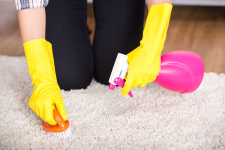 house chores: Portrait of woman is doing some cleaning work in the house. Stock Photo