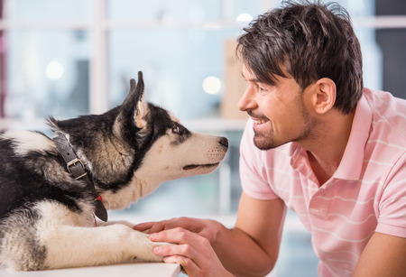 Close-up of happy man is looking at dog, husky.