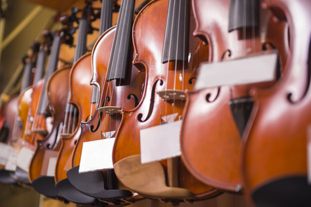 violins: Violins are hanging on the wall in the shop.