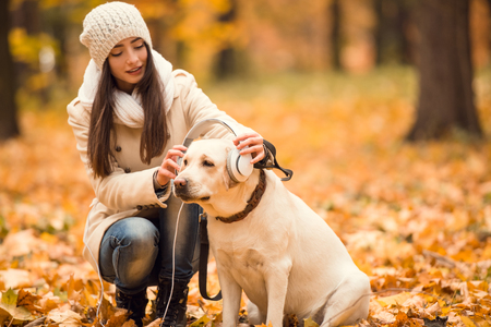 marcheur: Portrait of a beautiful young woman with her dog while walking in the autumn park