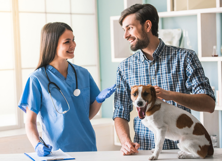 Beautiful female veterinarian and handsome guardian are talking and smiling while dog is sitting calmly on the table