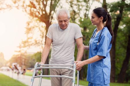 El anciano camina por el parque con la ayuda de caminantes adultos. La enfermera lo apoya